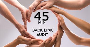 back link audit