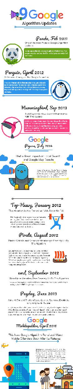 google algorithm updates infographic